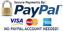 Make Secure Payments By PayPal